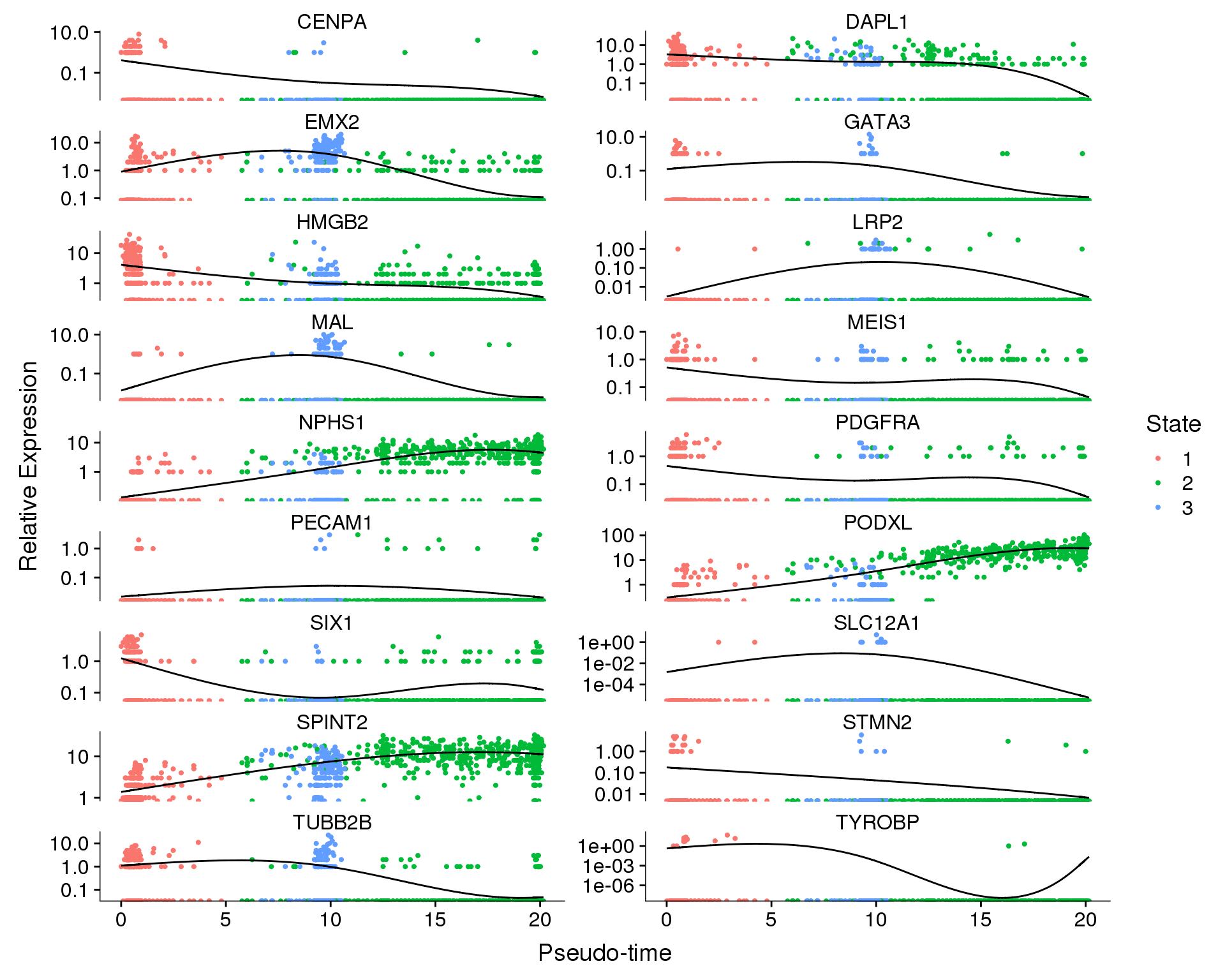 Organoids Nephron Trajectory Analysis